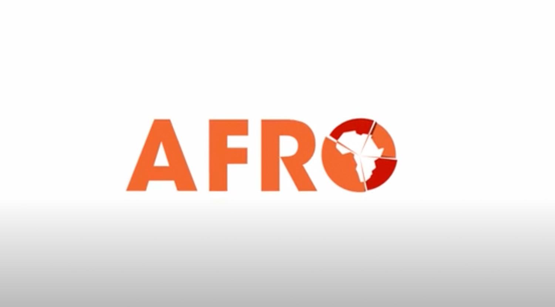 afrobarometer-2d-logo-amimation-agent-orange-design.jpg