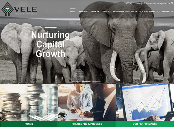 Financial Corporate Website Designers Developers Agent Orange in Johannesburg